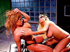 Shyla Stylez offers will not hear of pussy to lesbian Bridgette B.